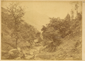 Tiechanjia Village on the Way from Hanzhong Fu to Qinzhou, China, 1875 WDL2084.png