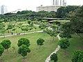 Toa Payoh Town Park 15, Aug 06.JPG