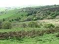 Towards Leycote - geograph.org.uk - 1292162.jpg