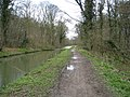 Towpath View of Chesterfield Canal with Hawks Wood on the left - geograph.org.uk - 747108.jpg