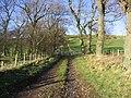 Track at Howtel Farm - geograph.org.uk - 301581.jpg