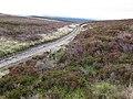 Track near Milltir Gerrig - geograph.org.uk - 973540.jpg