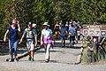 Trail to Norris Geyser Basin Museum (77ca5912-87da-4d4d-8405-35ab200c990a).jpg