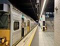 Train at Wynyard railway station, Sydney (platforms 3 & 4).jpg