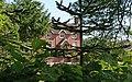 Tree House - geograph.org.uk - 838277.jpg