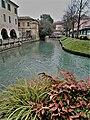 Treviso. 28.01.2020(4).jpg