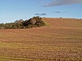 Triangulation Pillar near Earlseat (farm) - geograph.org.uk - 266384.jpg