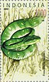 Trimeresurus hageni 2002 Indonesia stamp.jpg