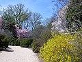Tudor Place in April (17731645762).jpg
