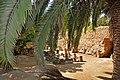 Tunisia-2929 (7846395704).jpg