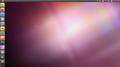 Ubuntu 10.10 Maverick Meerkat Netbook Live USB.png