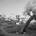 Uitzicht op de Toren van David en de oude stadsmuren, Bestanddeelnr 255-2290.jpg