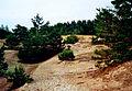 Ullahau-Naturreservat-Faaro-Gotland-2010 04.jpg
