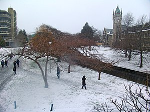 University of Otago - Dunedin campus in winter
