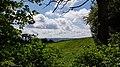 Vaalserberg-uitzicht tussen grenspaal 2 en 3.jpg