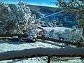 Valcuende nieve.jpg