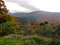 Valle del Genal 05.jpg