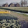 Vergezicht - Sassenheim - 20384549 - RCE.jpg