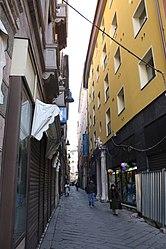 Via Pia, Savona 2010.jpg