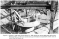 Victoria mine Taylor trompe heads condition in 1949 2.png