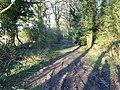 View ENE along Broad Fen Lane - geograph.org.uk - 405295.jpg