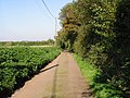 View along the road from Twitham Oast houses - geograph.org.uk - 1038522.jpg
