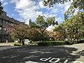 View in Maidashi Campus of Kyushu University 2.jpg