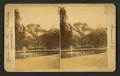 View of a park with a fountain in a lake and people on a bench in the background, by Union View Co..png