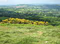 View west from The Malverns - geograph.org.uk - 825535.jpg