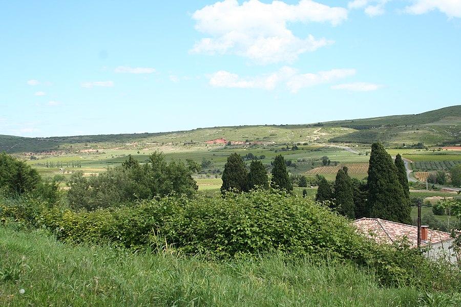Villeveyrac (Hérault) - vue en direction de la route D2