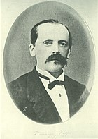 Vincenzo Joppi (1824-1900).jpeg