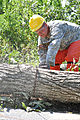Virginia National Guard soldiers clear fallen trees 110828-A--373.jpg