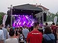Włocławek-concert of Mrozu during May Holiday Party.jpg