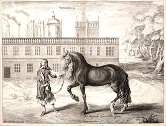 "Andalusian horse - A 1743 engraving of a ""Spanish horse"""