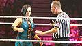WWE 2013-11-08 21-05-56 NEX-6 7996 DxO (10959306486).jpg