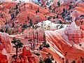 Walking through Wonder, Bryce Canyon, UT 9-09 (22415110069).jpg
