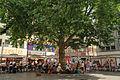 Wallrafplatz-sommer.jpg