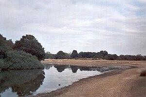 English: A photograph of Lake Alexandra, a par...