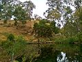 Warburtons Bridge camp spot overlooking the river @ Castlemaine Diggings National Heritage Park - panoramio.jpg
