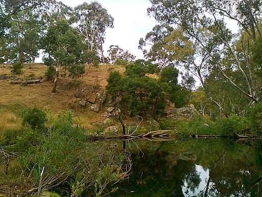 Warburtons Bridge camp spot overlooking the river @ Castlemaine Diggings National Heritage Park - panoramio