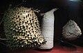 Wasp nests, London.jpg