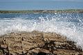 Waves on the rocks at Harlyn Bay - geograph.org.uk - 1294338.jpg