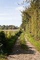 Wayfarer's Walk, Droxford - geograph.org.uk - 592486.jpg