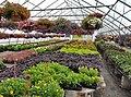 Wertmans Farm; Schaghticoke, NY (35379288092).jpg