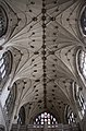 Winchester Cathedral Ceiling3 (5697500462).jpg