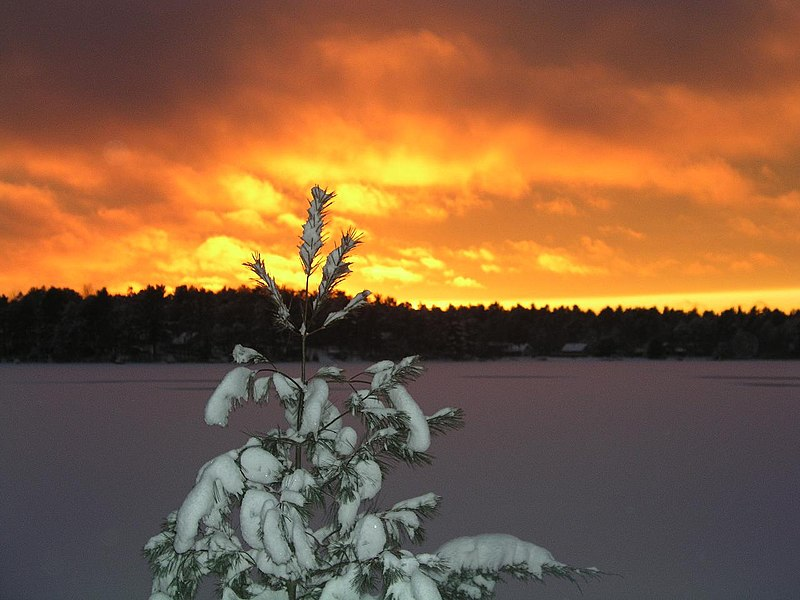 Fil:Wintry sunset over Watchic after the storm.JPG