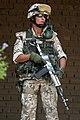 Wojsko Polskie Irak DM-SD-05-11387.jpg