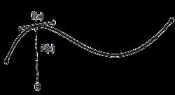 Worm-like chain - Wikipedia