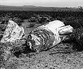 X-2 Accident 8181.jpg