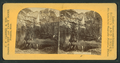 Yosemite Valley, (Calif.), from Robert N. Dennis collection of stereoscopic views.png